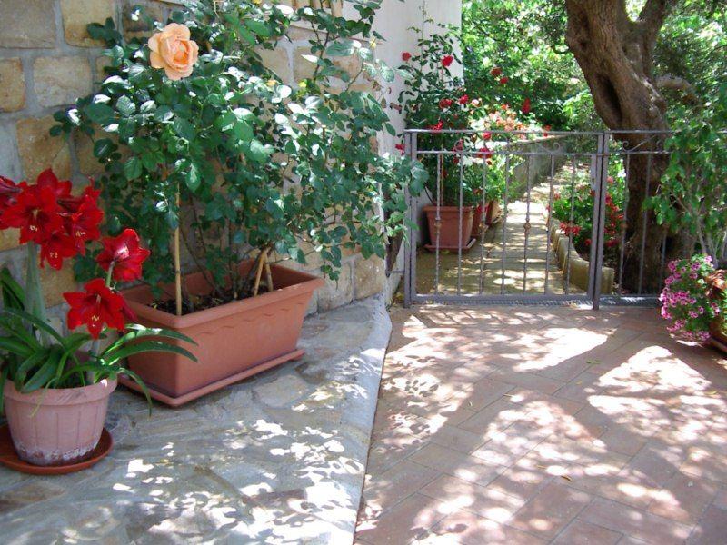 Jardim Locação Vivenda 54358 Capo d'Orlando