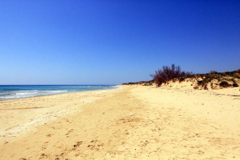 Praia Locação Apartamentos 75278 Pescoluse