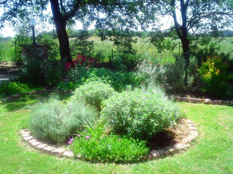 Jardim Locação Casa 87280 Cortona