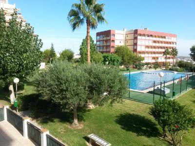 Vista desde do alojamento Loca��o Apartamentos 101631 Torrevieja