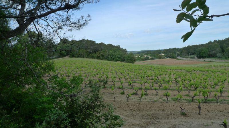 Vista dos arredores Locação Vivenda 115618 Lorgues