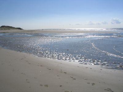 Praia Locação Casa 80399 Le Touquet