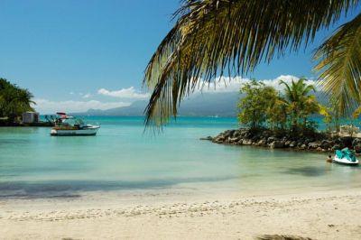 Loca��o Est�dio 101387 Gosier (Guadeloupe)
