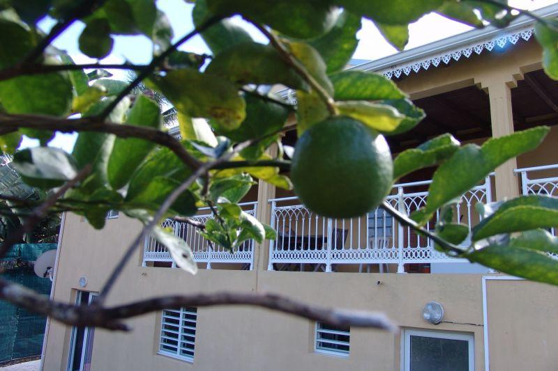 Vista exterior do alojamento Locação Apartamentos 117365 Goyave
