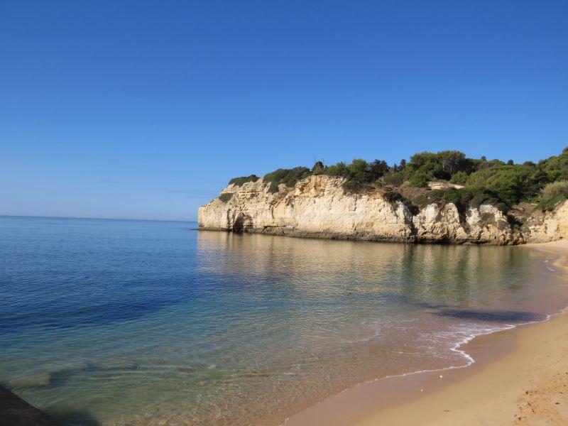 Praia Locação Casa 75803 Lagoa