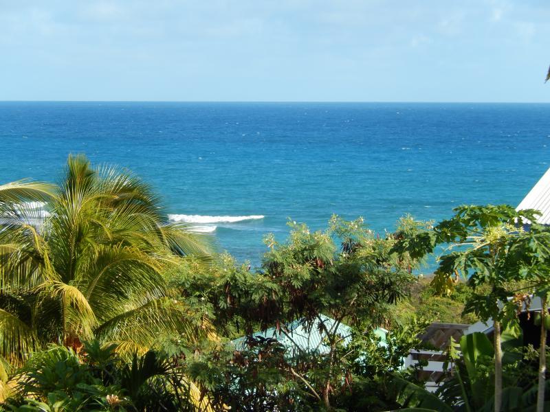 Vista do terraço Locação Apartamentos 82066 Saint Francois