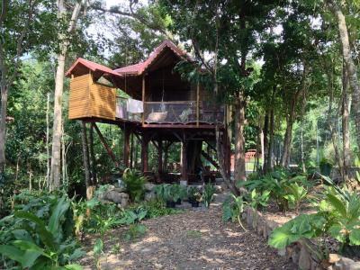 Loca��o Cabana nas �rvores 83872 Bouillante