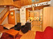 Apartamento em resid�ncia Les 2 Alpes 4 a 6 pessoas