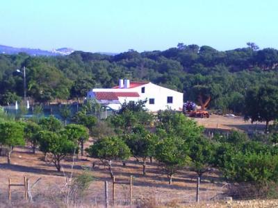 Planta do alojamento Loca��o Casa de turismo rural/Casa de campo 24494 Santiago do Cac�m