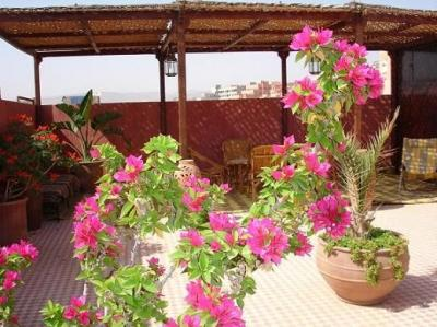 Vista do terra�o Loca��o Apartamentos 27835 Agadir