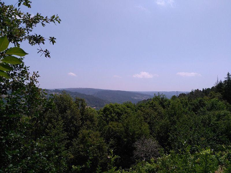 Vista desde do alojamento Locação Casa de turismo rural/Casa de campo 39668 São Pedro do Sul