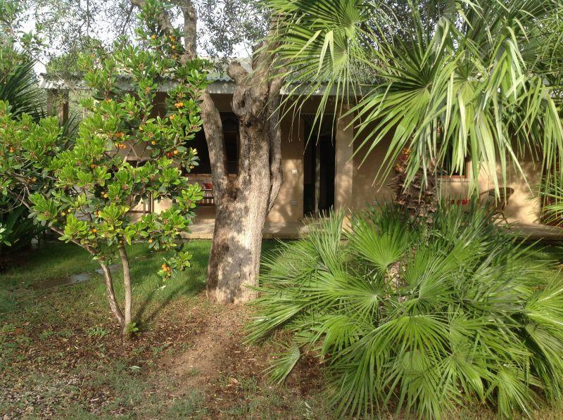 Vista exterior do alojamento Locação Apartamentos 45136 Alghero