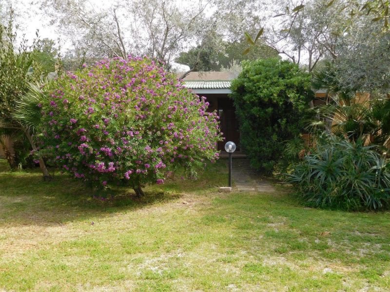 Jardim Locação Apartamentos 45136 Alghero