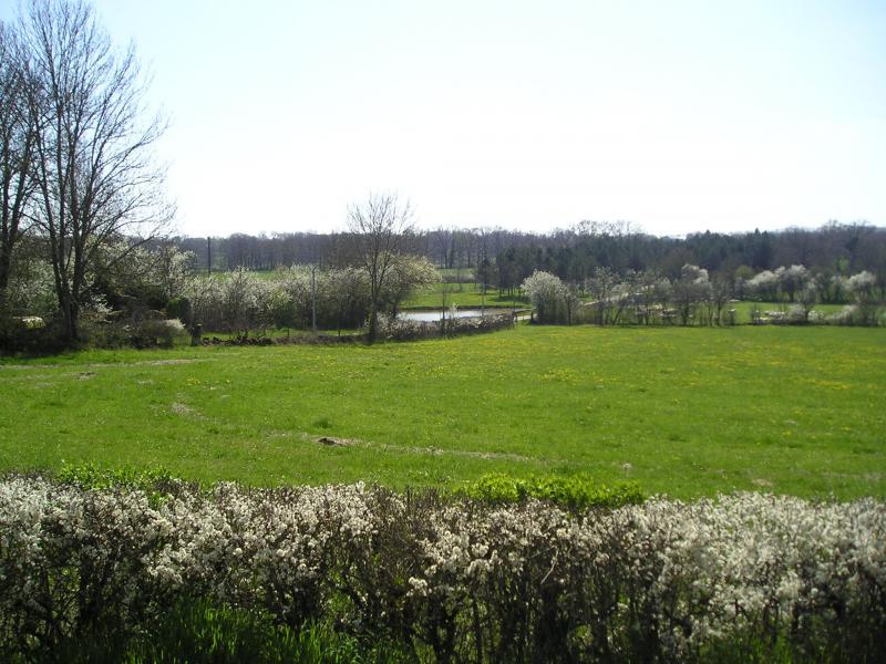 Vista desde do alojamento Locação Casa de turismo rural/Casa de campo 51135 Saint-Cirq-Lapopie