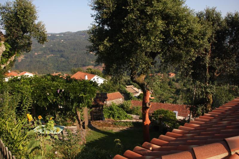 Vista exterior do alojamento Locação Casa de turismo rural/Casa de campo 59825 Sever do Vouga