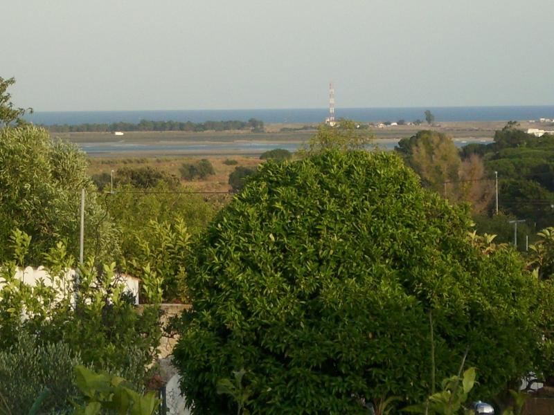 Vista exterior do alojamento Locação Apartamentos 9115 Olhão