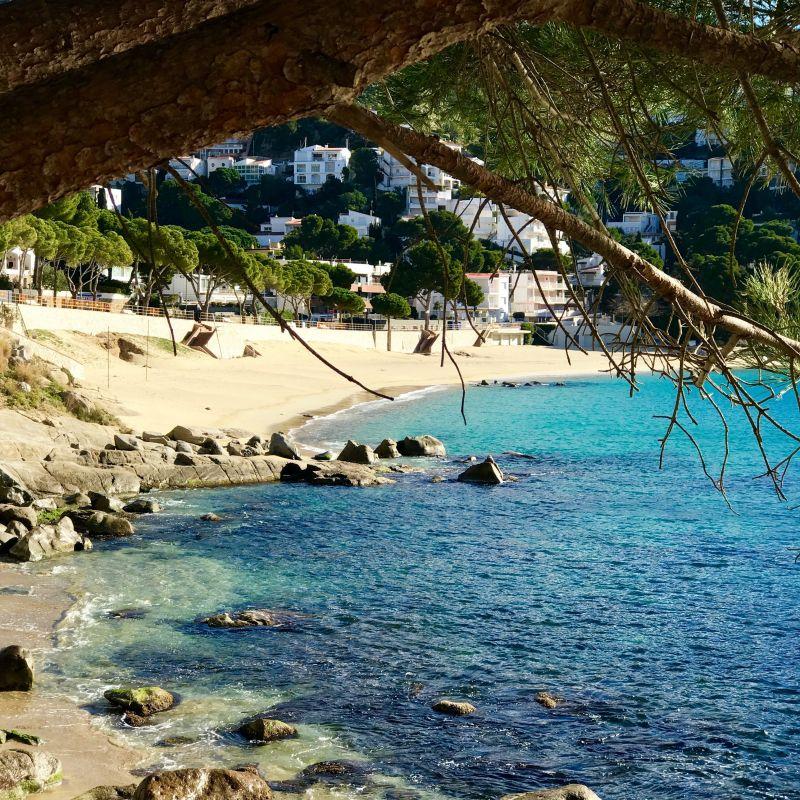 Praia Locação Apartamentos 117038 Rosas