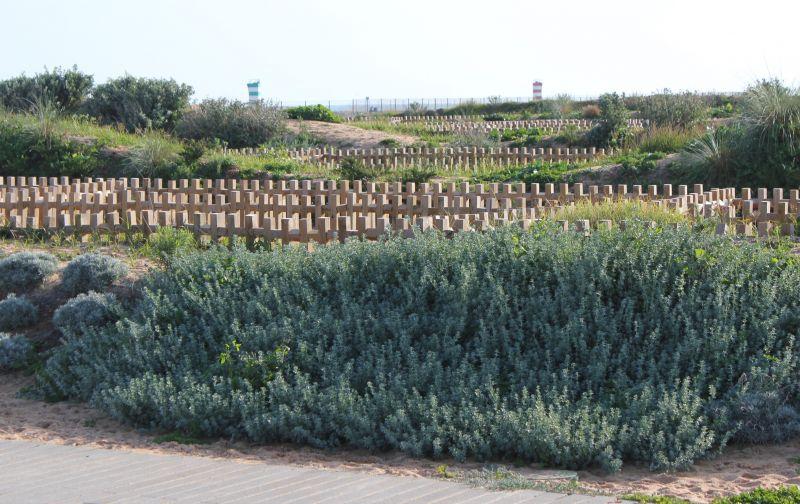 Vista dos arredores Locação Estúdio 95696 Vilamoura