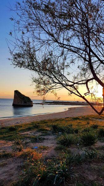 Praia Locação Casa 73207 Pescoluse
