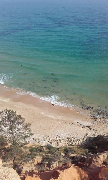 Praia Locação Apartamentos 75929 Olhos de Água