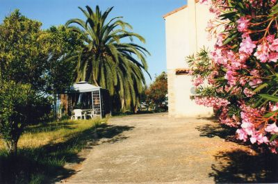Jardim Locação Vivenda 101791 Sagone