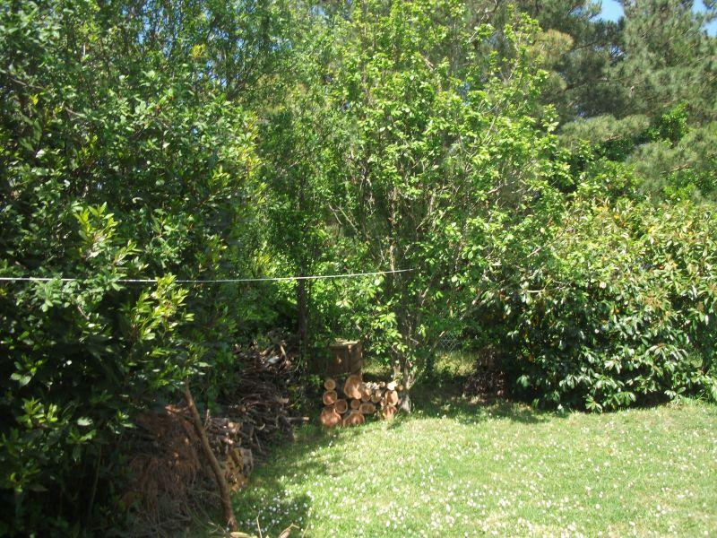 Vista desde do alojamento Locação Vivenda 113645 La Guérinière