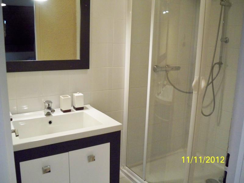 casa de banho Locação Apartamentos 74513 Thollon Les Mémises
