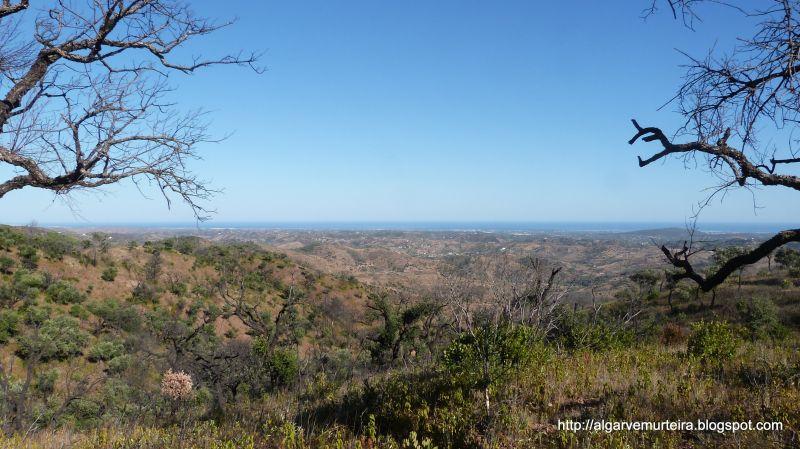 Vista dos arredores Locação Casa de turismo rural/Casa de campo 90561 Tavira