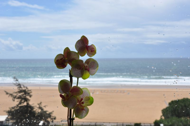 Sala Locação Vivenda 117009 Praia da Rocha