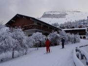 Apartamento em resid�ncia Les 2 Alpes 2 a 4 pessoas
